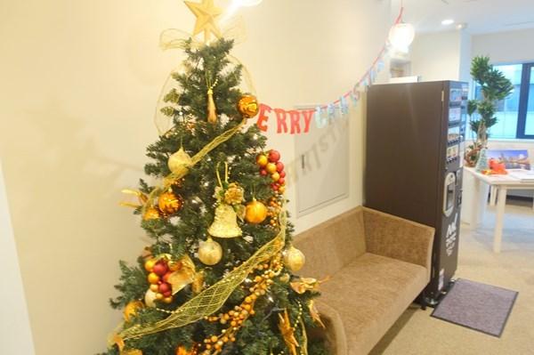 横浜マイナビウエディングサロン クリスマスツリー