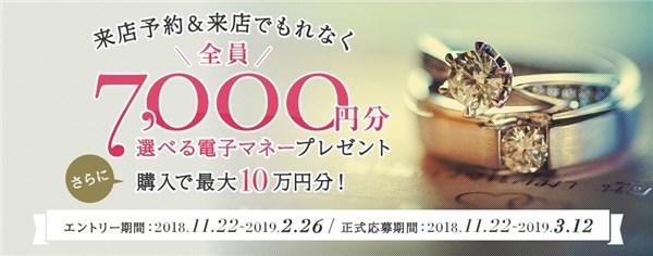 2018-19年冬 平成最後の指輪探し応援キャンペーン マイナビウエディング